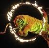 Цирки в Кинешме